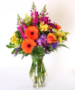 Rich jewel toned flowers are arranged in this lovely arrangement. Gerbera daisies, snapdragons, and other long lasting flowers are included.